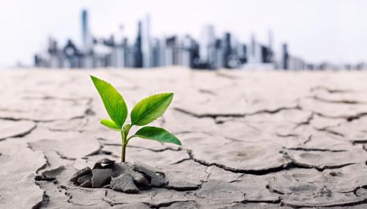 Rischi Ambientali Finanza Verde