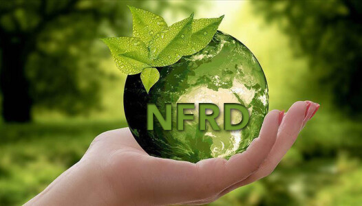 NFRD-Sostenibilita